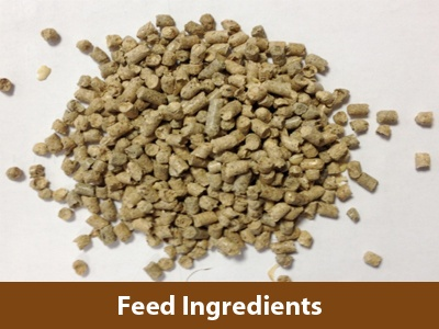 feed-ingredients
